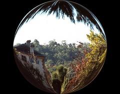 villa p circle