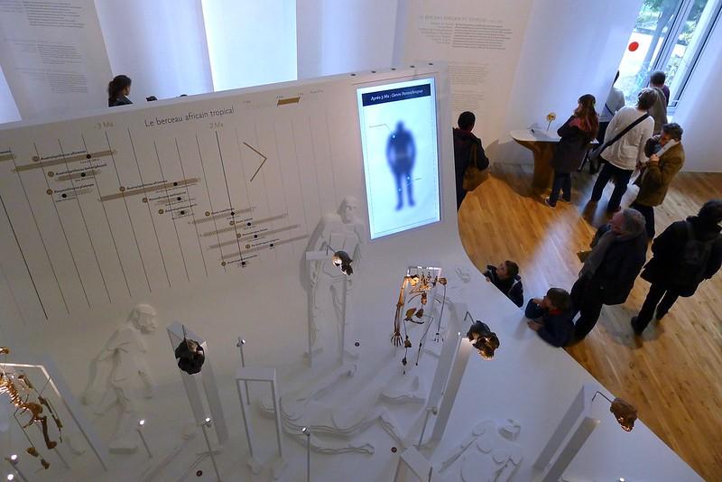 Musée de l'Homme, Paris