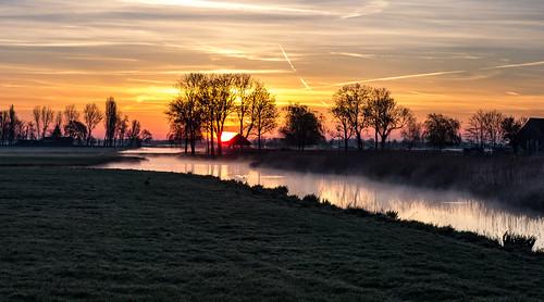 trees water grass sunrise canal haze polder sundawn middendelfland nederlandvandaag