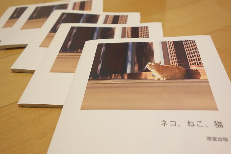 平成27年(2015年)12月19日(土)~27日(日) ぎゃらりーKnulp ねこ展