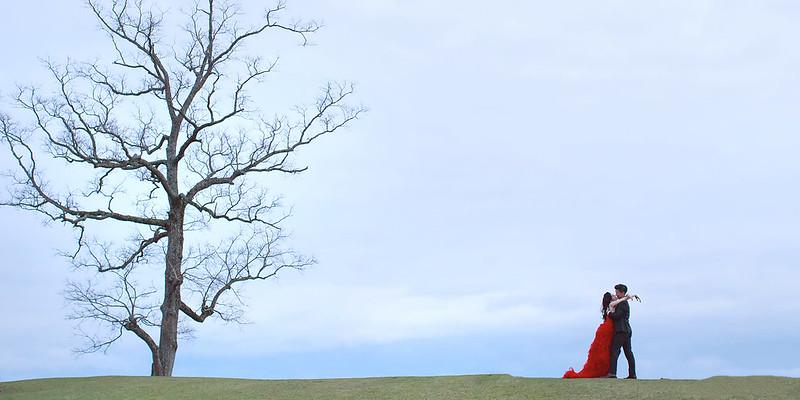 顏氏牧場,後院婚禮,顏氏牧場2,極光婚紗,海外婚紗,京都婚紗,海外婚禮,草地婚禮,戶外婚禮,旋轉木馬_0071