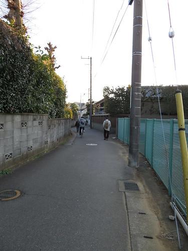 中山競馬場のオケラ街道