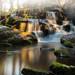 Les cascades de St Herbot