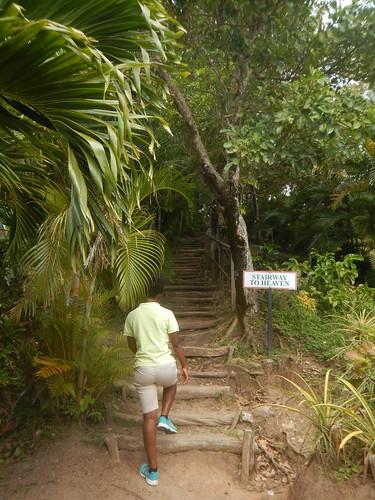 saintlucia stlucia westindies stairwaytoheaven