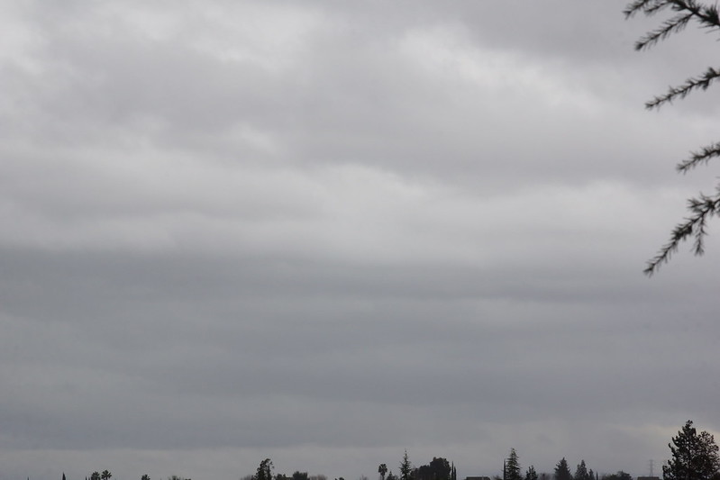 2017-02-06 Nothing but Gray Sky - Week 6 [#6]