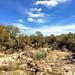 003e ~ Bandera Creek