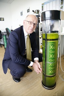 Xanthella makes the Scottish Business Pledge