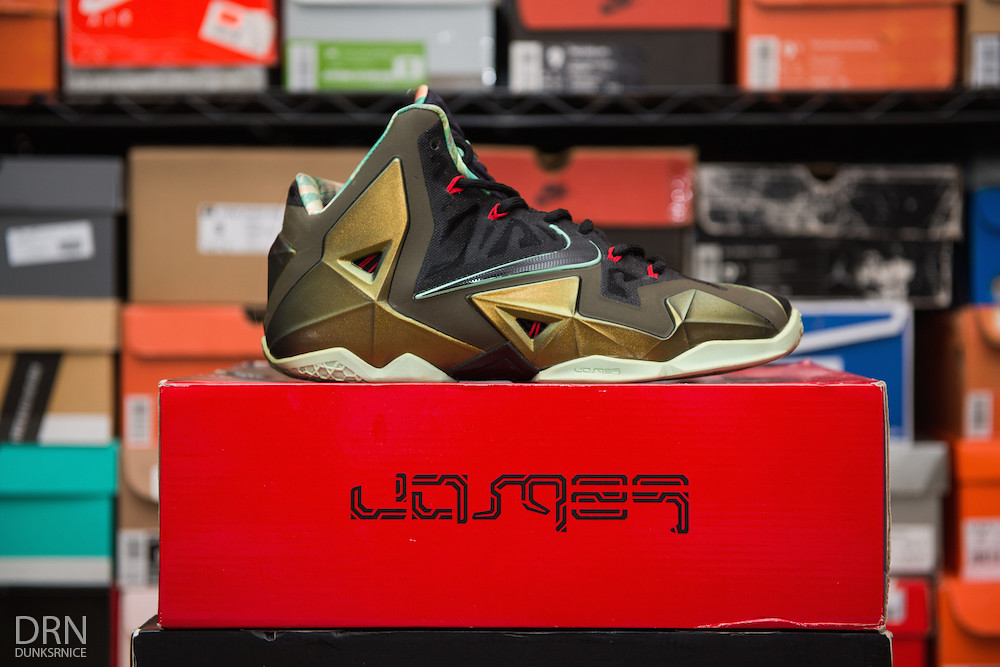 Kings Pride Lebron XI's.