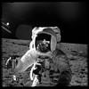 Apollo Photo Edit