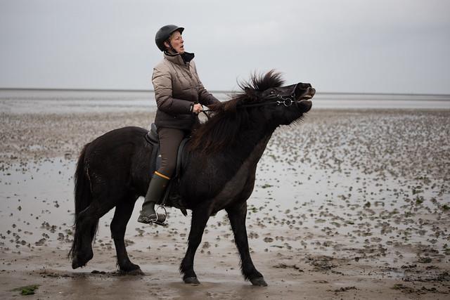 Mandø Horsewomen