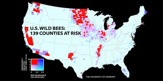 U.S. Wild Bees: 139 Counties at Risk