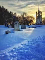 The Dead of Winter No8 - 25 Jan 2016