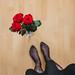 Valentine's Day by M. Klasan