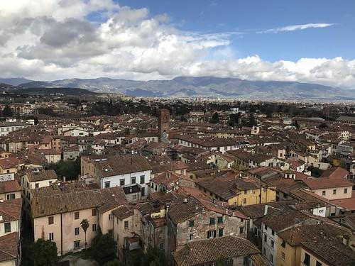 Torre Guinigi, Lucca.