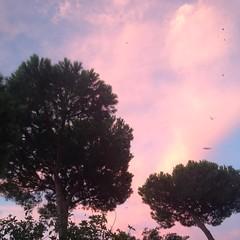 #sea #ischia #ischia2015 #ischiagram #ischialove #ischialover #summertime #summer2015 #sunset