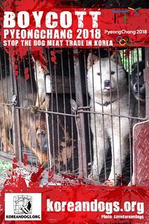 Boycott Pyeongchang_1440x2160_h-2