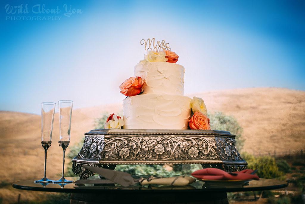 nella-terra-wedding080