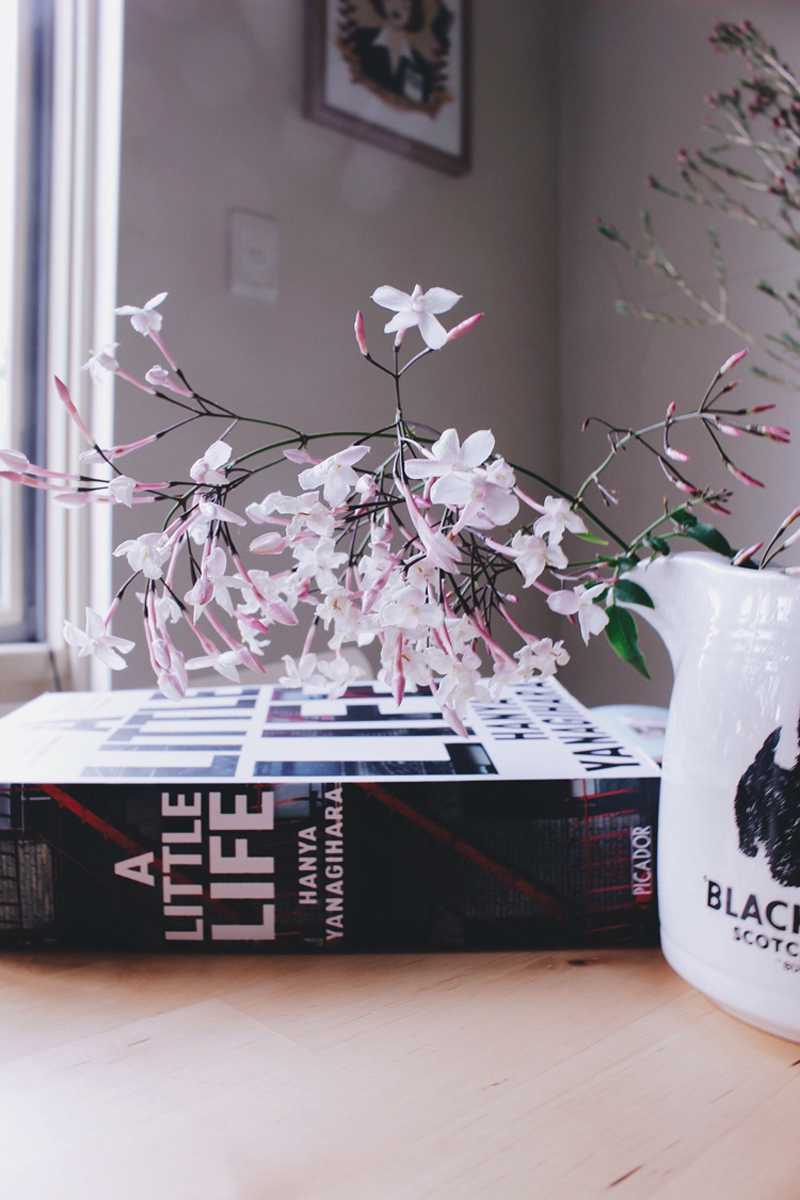 A Little Life, Bramble and Thorn, Hanya Yanagihara, Book, Review