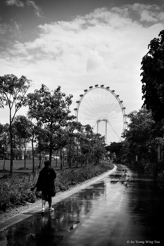 Ferris Wheel In Gloomy Weather