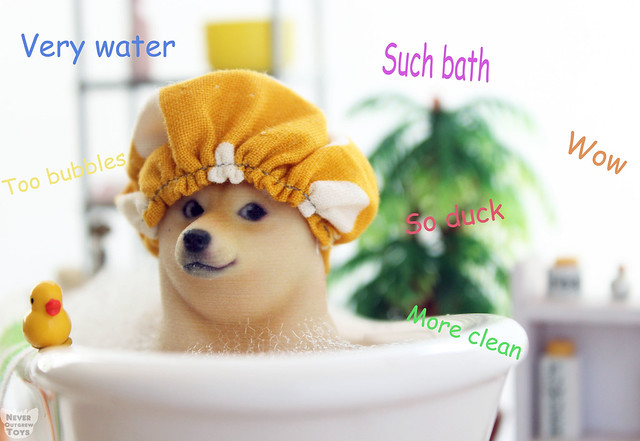 doge bath copy