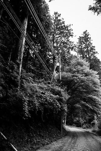 IMG_2976_LR__Kyoto_2015_09_04
