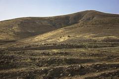 Dead Sea & Jordan Rift Valley 041