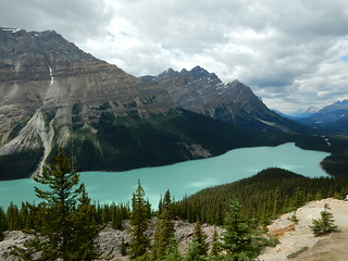 Peyto lake - Jasper National park