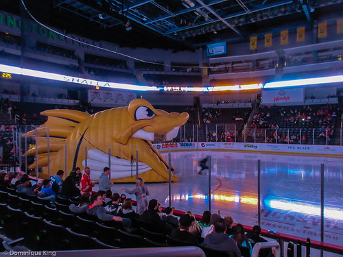 Toledo Ohio Walleye hockey