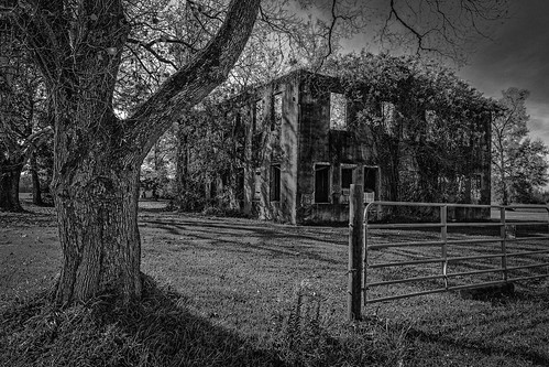 abandoned bw blackwhite blackandwhite decay decayed derelict deserted dilapidated gate highschool monochrome old oldtarkingtonschool school tarkington tree vines cleveland texas unitedstates us