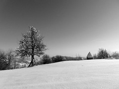zile de iarnă/winter days