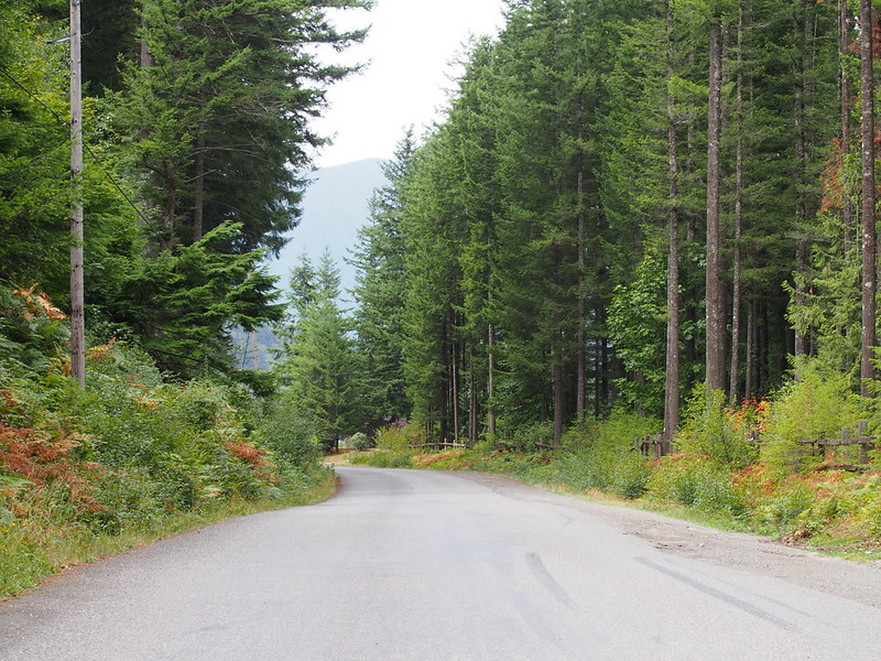 Middle Fork Rd