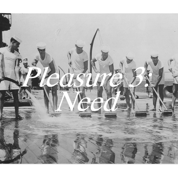 Pleasure3