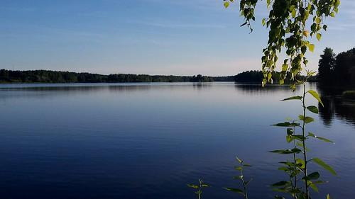 nature water river quiet calm latvia daugava