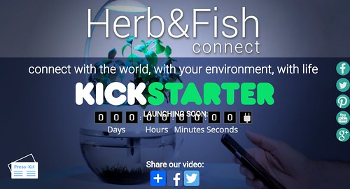 Herb_Fish_home