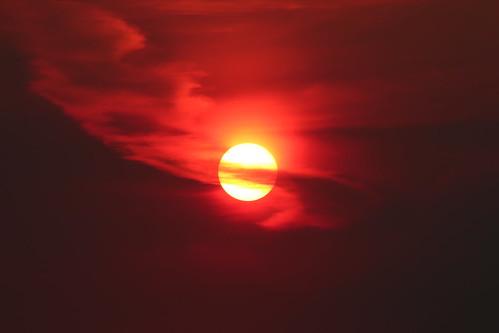 Red Hot (SOTC 170/365)