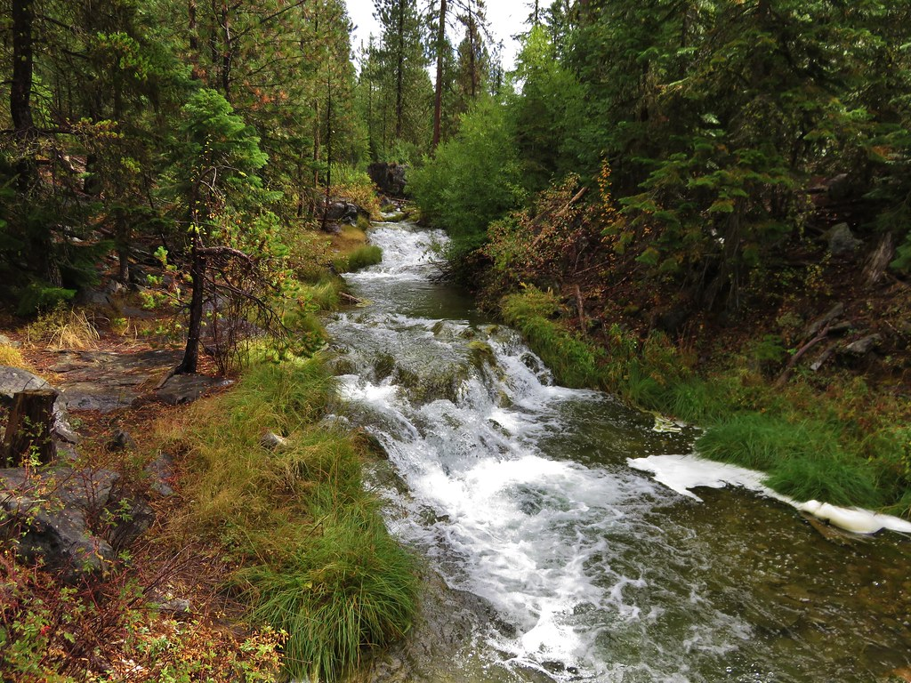 Paulina Creek