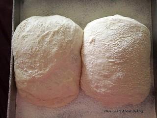 bread_ciabatta01