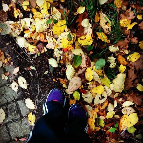 Geluksmomentje van de dag. #running #autumnlove 🍁 #countyourblessings
