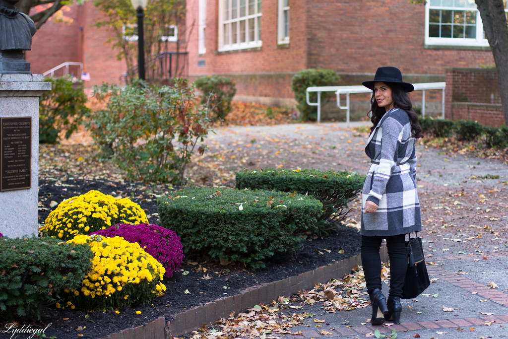 grey plaid coatagain, black pants, wool hat-9.jpg