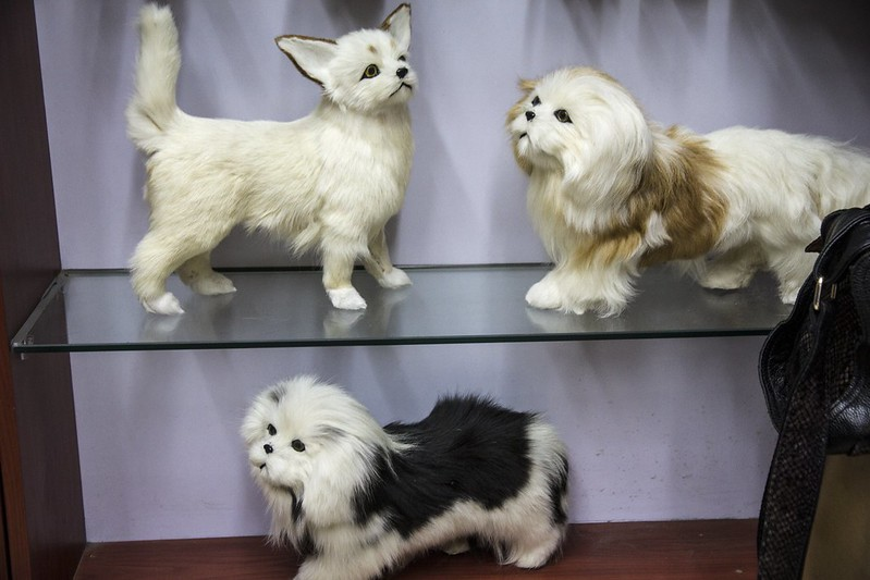 Hundepelz: Undercover Recherche in China