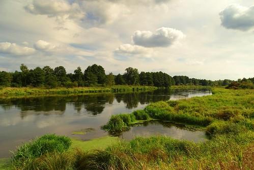 blue summer sky green nature water clouds reflections river warm view poland polska landcape pilica lodzkie łódzkie smardzewice