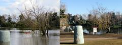Flood Comparison