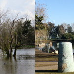 Flood Comparison