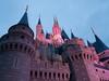 Cinderella Castle by Tom Simpson