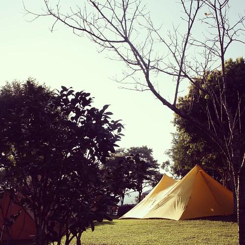 20150906 早安 我最愛的黃色帳篷 (雖然不是我的)  #歐北露  #愛露營木作營  #Soulwhat