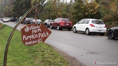 Southlands Heritage Farm Pumpkin Patch, Vancouver