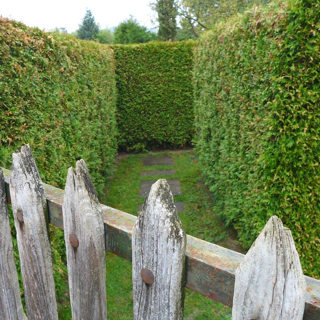 hedge entrance