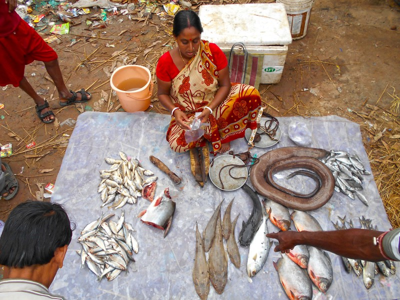 Local Market - Sundarban, India