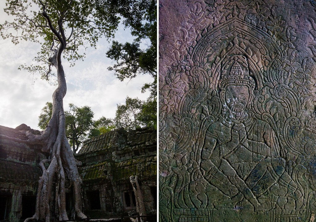 Angkor - Ta Prohm4-1