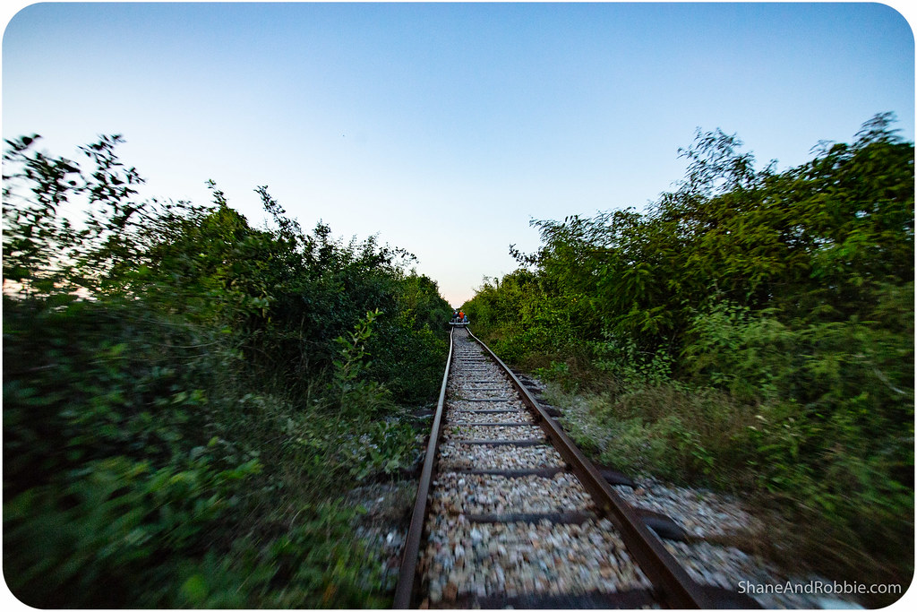 20151201(Canon EOS 6D)-00619